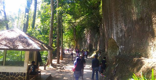 Taman Raya Hutan Juanda