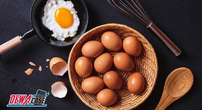 Sering Makan Telur Baik bagi Tubuh? Ini Plus-Minusnya